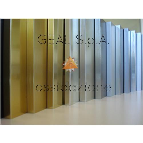 Ossidazione Geal