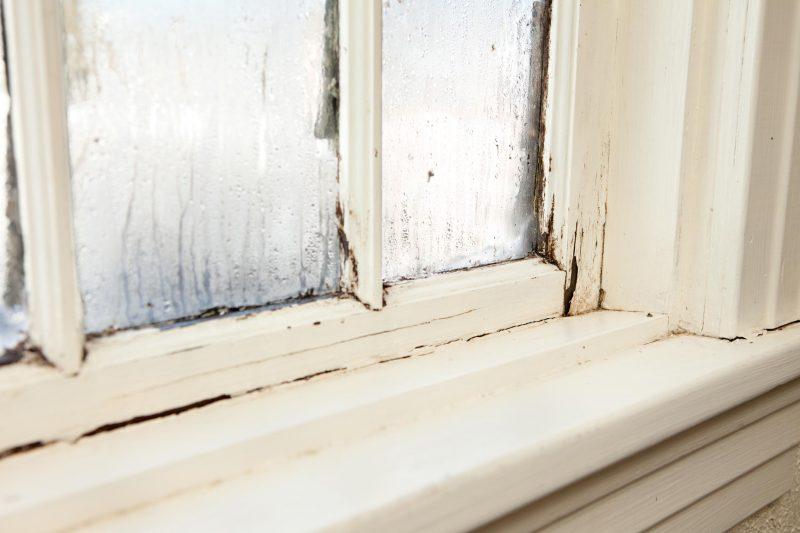 Studio PHI su comfort, igiene e finestre